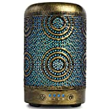 Aromatherapy Diffusers,SALKING 100ml Metal Essential Oils...